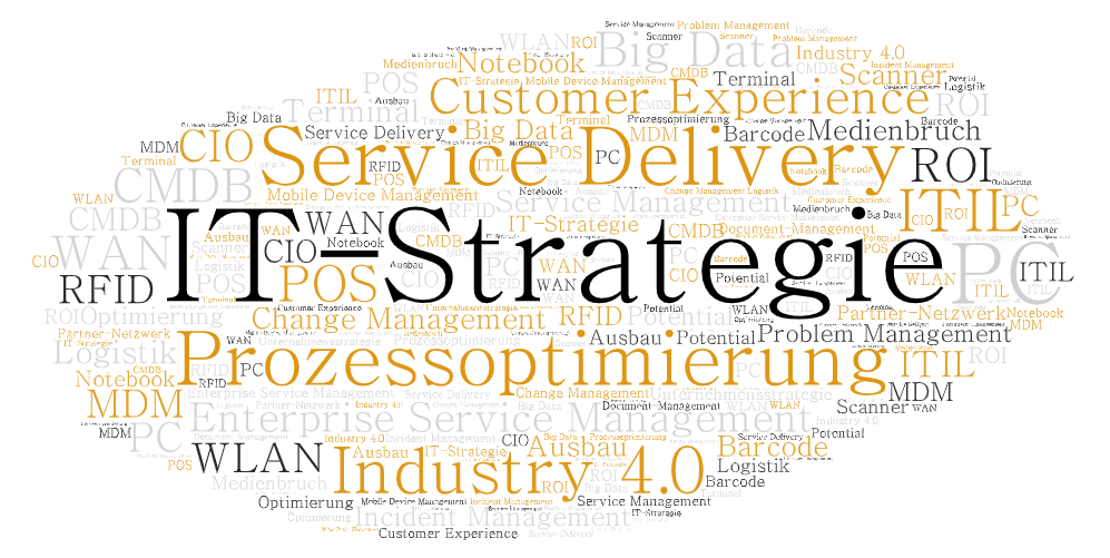 "Wordcloud ""IT-Führung, IT-Support und Service Delivery"""